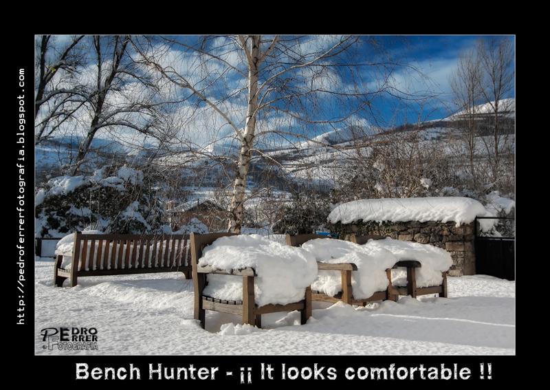 El cazador de bancos - Bench Hunter Part XVIII - ¡¡¡ It looks comfortable !!!