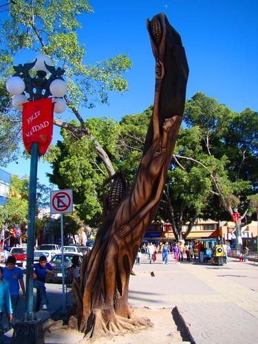 Parque de Tehuacán, Pue. (8)