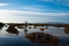 Worcester Floods (jactoll) Tags: morning winter water river nikon january severn worcestershire nikkor vr d60 malvernhills floodplain 1685mm