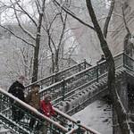 Québec: L'escalier de la Terrasse-Dufferin