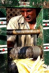Sugar cane man