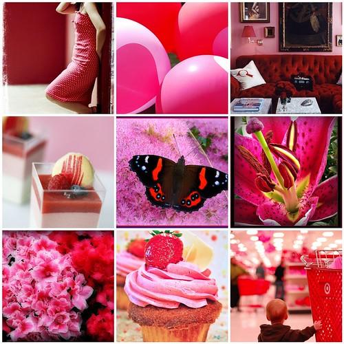 Flickr Favorites 01.27.2010