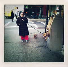 """The Woman Whose Dog Peed on an ATM"" (Sion Fullana) Tags: urban newyork dogs vintage square chelsea streetphotography squareformat characters allrightsreserved newyorkers 8thavenue newyorklife iphone atmmachine 500x500 urbanshots fakepolaroids urbannewyork iphonephotography iphoneshots iphoneography iphoneographer sionfullana shakeitapp womanwithredpants womanwithtwosmalldogs thewomanwhosedogpeedonanatm throughthelensofaniphone"