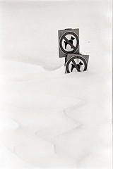no doggies in the snow please (georgsfoto) Tags: winter snow diafine nikonfm2 yfilter nikkorhauto1885 neopan400640