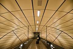 S1 Underground Station Hamburg Airport (difridi) Tags: abstract lines architecture underground airport publictransportation geometry curves hamburg architektur s1 flughafen sbahn geometrie linien difridi