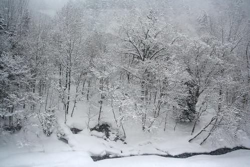是我見過最美的雪景