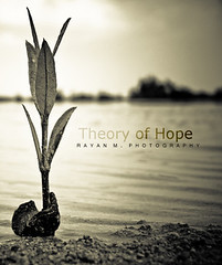 Theory of Hope (Rayan M.) Tags: sea blackandwhite bw white plant black flower macro monochrome rose landscape hope missing power faith perspective explore shore strength seashore longing perseverance persistence      explored            rayanmphotography theoryofhope