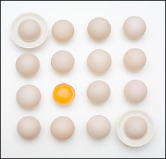 Less is More: Eggs on White (Mark L Edwards) Tags: food white kitchen shell clean eggs canon5d onwhite duckeggs yoke lessismore fiap vivitar285hv dapagroup dapagroupmeritaward platinumheartaward dapagroupmeritaward3 dapagroupmeritaward4 dapagroupmeritaward2 dapagroupmeritaward1 gnpc platinumheartshalloffame markledwards