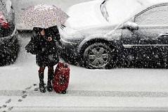 Nevica.. meglio chiamare un taxi .... (luporosso) Tags: snow rome roma happy neve gioia nevearoma nikkor70300vr d300s luporosso nikond300s snowtorome