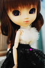 darcy (katyou) Tags: blackandwhite white black doll pretty dolls curly pullip latte curlyhair darcy eyechips coolcateyechips pullplatte