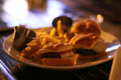 bardog sliders