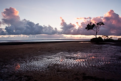 Reflections at Sunrise (jezza323) Tags: reflection tree clouds sunrise sand pentax au wide australia brisbane qld queensland cloudscapes 18mm bris wellingtonpoint k200d justpentax da1855alii pentaxart