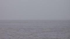 day 48 - 3 (chrysics) Tags: sky river grey overcast mersey bonus365