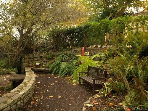 Jardín Botánico 1