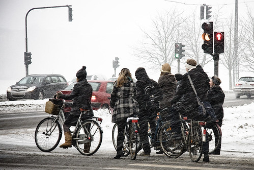 A Flurry of Winter Cyclists