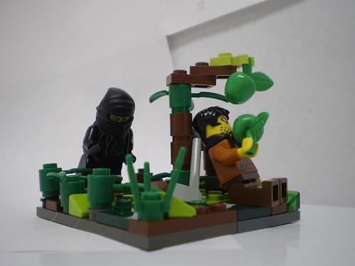 The Ninja's Prey