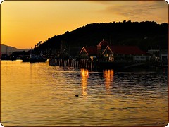 Beautiful Scotland, night falls on Oban (jackfre2) Tags: houses light sunset sky orange water beautiful clouds reflections dark boats gold scotland duck highlands hills oban loch fishingboats wrinkles