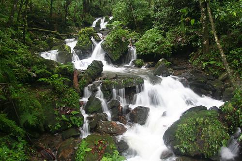 Juan Diego Creek waterfall