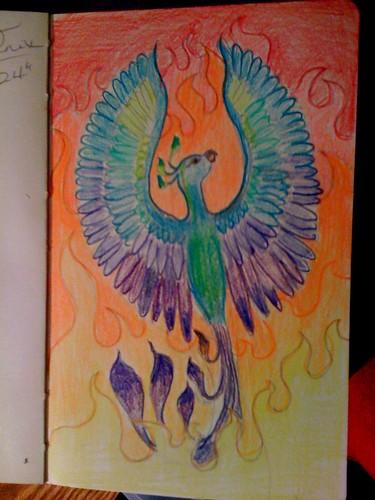 Phoenix color study