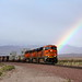 BNSF 6621 @ Siberia - Warren Buffet's Rainbow Express.
