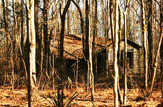 Fixer Upper (D. Scott Lipsey) Tags: mississippi fixerupper abandonedplaces countryhome tinroofrusted dilapidatedhouses sothernstructures