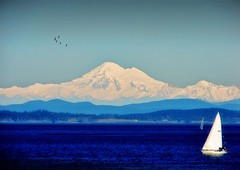 Mount Baker .. view from Oak Bay