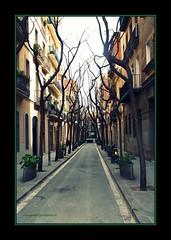 Barcelona Back on Street (LETHO 2706) Tags: barcelona spain larambla gaudi sagradafamilia picnik spanien casamila lapedrera barrigotic placadecatalunya parkgell canonefs60mm mercatboqueria tamron18200mm mhcb canon450d elpobleespanyol bysne espangna photographyartbysnech museudhistoriadelaciutat