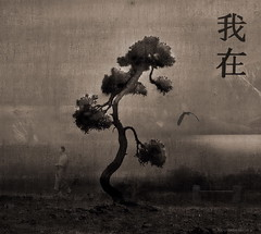 Zen Tree (h.koppdelaney) Tags: life light sea art heron japan digital photoshop self truth peace heart symbol path buddha peaceful monk buddhism philosophy zen mind soul quest metaphor consciousness mystic psyche pilgrim symbolism psychology archetype vipassana