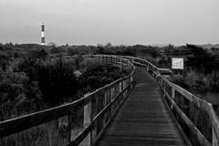 Fire Island Boardwalk (Bill McBride Photography) Tags: park blackandwhite lighthouse ny newyork canon landscape island fire eos rebel li state july longisland boardwalk 1855 2009 xsi efs1855 robertmoses 450d canon450d canonxsi