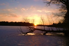 Sunset on the Frozen Lake (chumlee10) Tags: sunset lake snow tree ice nature wisconsin clouds outdoors frozen sony mercer wi a300 ironcounty