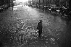 * (Laurent Filoche) Tags: bus rain streetphotography morocco maroc marrakech leicam7 djemaaelfna djellaba notcropped bonzography kodaktrix400800 voigtlander35mmf14