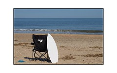 POTW - Photowalk 11.2 - Cape Henlopen -- Enjoying the sun