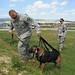 Army Military Working Dog Teams