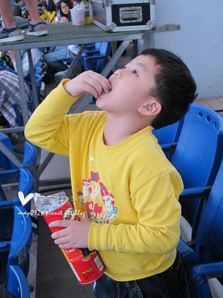 新莊看棒球49-2010.04.18