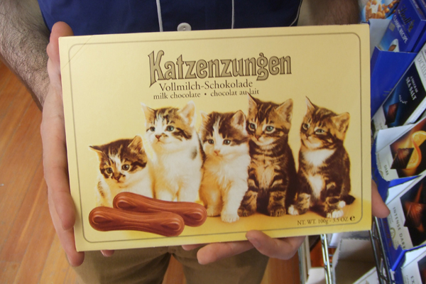 cat chocolate!