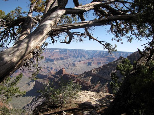 Grand Canyon-16