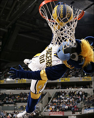 """Boomer"" The Pacers Mascot (heat631) Tags: nba mascots"