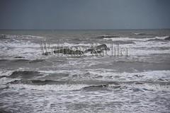 00139243 (wolfgangkaehler) Tags: sea usa landscape coast nationalpark surf unitedstates wind unitedstatesofamerica wave olympicpeninsula unescoworldheritagesite worldheritagesite northamerica washingtonstate olympicnationalpark kalaloch northamerican stormwatching roughocean
