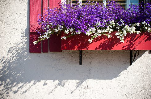 flowerbox-flickr-somewhereinAK