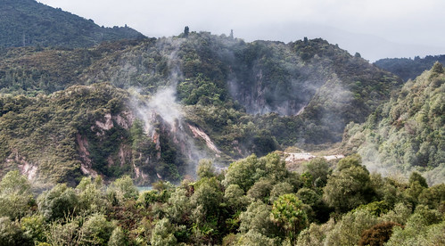 Rotorua 14