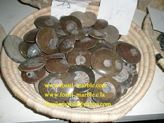 best fossils and fossilized marble (104) (crafts jama3 lafna) Tags: crafts marrakech marble fossilized jamaa lafna