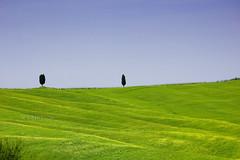 2 di 2 (stefano ciccocioppo) Tags: blue trees 2 italy verde green alberi d50 landscape nikon italia toscana minimalismo azzurro minimalist paesaggio 2010 keypaz