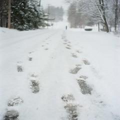 (super ape) Tags: road winter snow newyork tlr rollei tracks footprints driftwood vb expiredfilm rolleicord kodakportra160nc bemuspoint