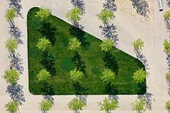 Urban Trees (Aerial Photography) Tags: city trees urban by munich mnchen bayern aerial m stadt metropolis deu settlement luftbild luftaufnahme obb deutschlandgermany siedlung arnulfpark maxvorstadt grosstadt fotoklausleidorfwwwleidorfde klausmannplatz 24052010 1ds44621