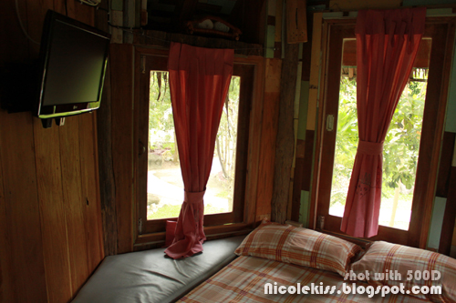 TV in tree house