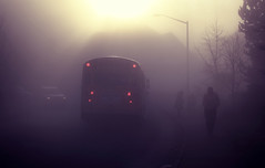 Ce matin II (sparth) Tags: seattle red bus silhouette fog lights washington foggy february schoolbus 2010 sammamish