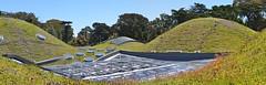 Living Roof (Images by John 'K') Tags: sanfrancisco california panorama stitched californiaacademyofsciences johnk d5000 johnkrzesinski randomok