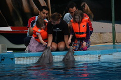 (Olaya Garcia) Tags: portugal canon eos sam dolphin primo cher missy algarve sparky delfin albufeira colby zoomarine guia bottlenose golfinho tursiops truncatus mular roaz 1000d ruaz xinana