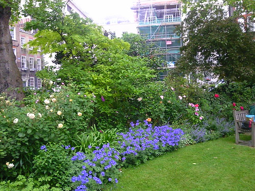 Open Garden Squares Weekend London: See some lovely London gardens
