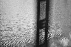 unexplained rational masturbation (Anna Montuori (con la cazzimma inside)) Tags: bw abstract water reflex nikon rice whats bn piemonte movimento moved grains astratto acqua cose riflesso mosso grana risaie d80 annamontuori artistadellafotocasuale randomphotoartist montuorisstyle seguementali
